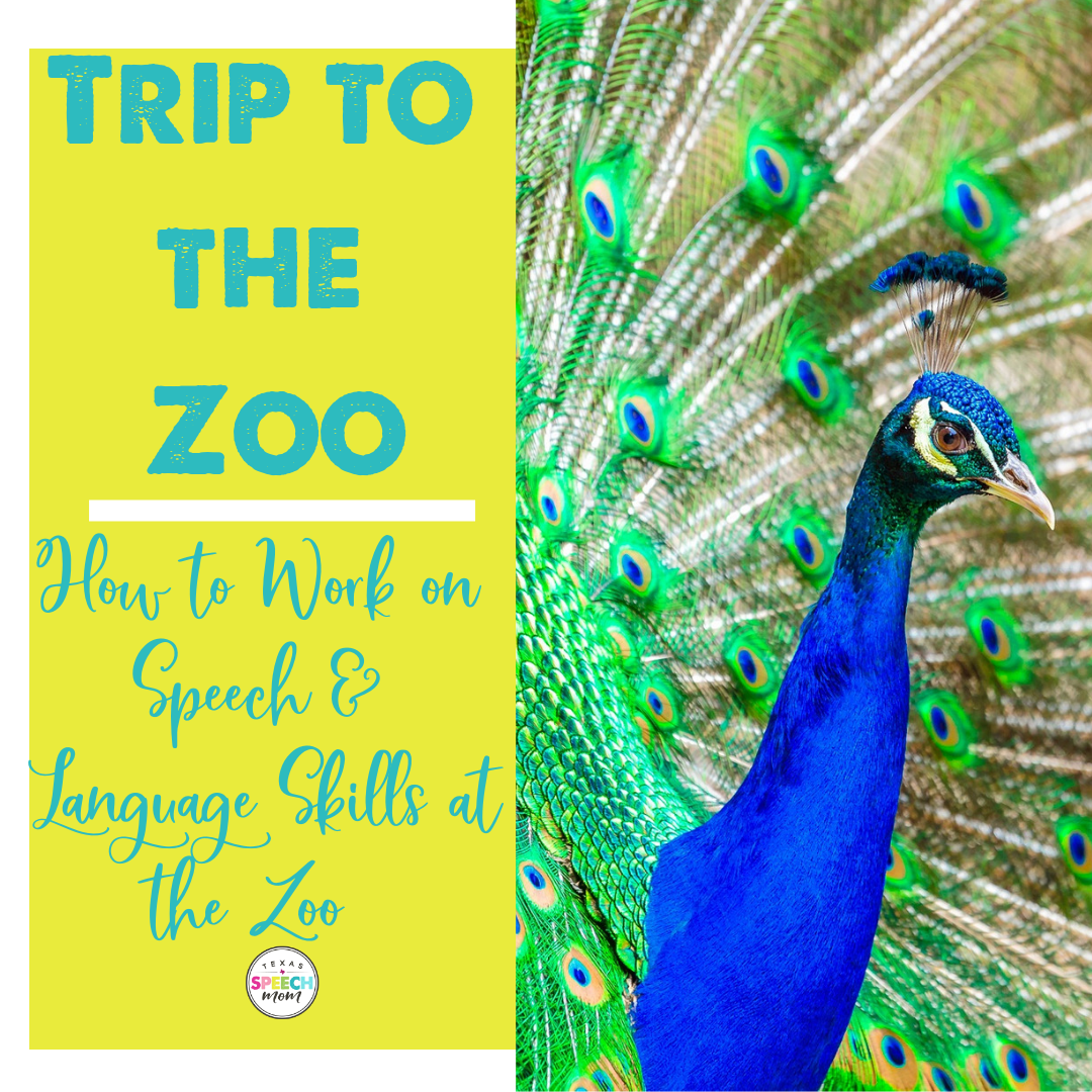 How To Work On Speech and Language Skills At The Zoo!